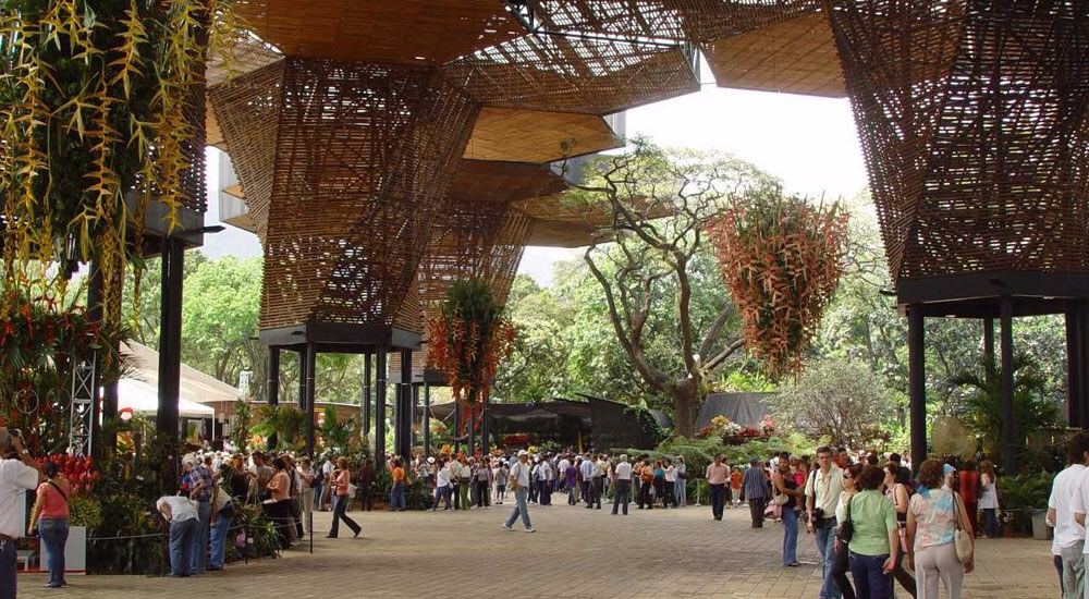 jardin botanico opt